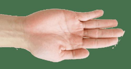 Palm size control