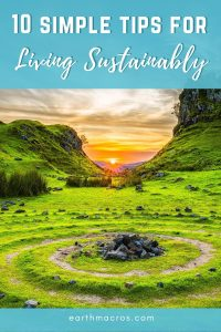 10 Simple tips for living sustainably