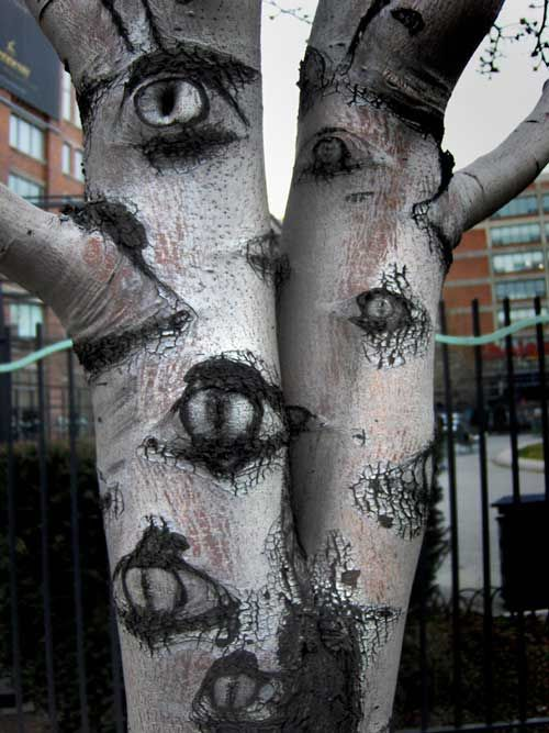 Halloween decoration outdoor tree with eyes