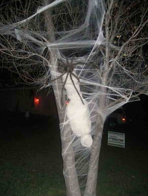 DIY Halloween outdoor decoration - decorate tree with cobwebs body hung