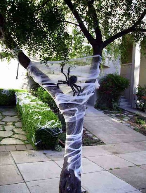 DIY Halloween outdoor decoration - decorate tree with cobwebs and spiders